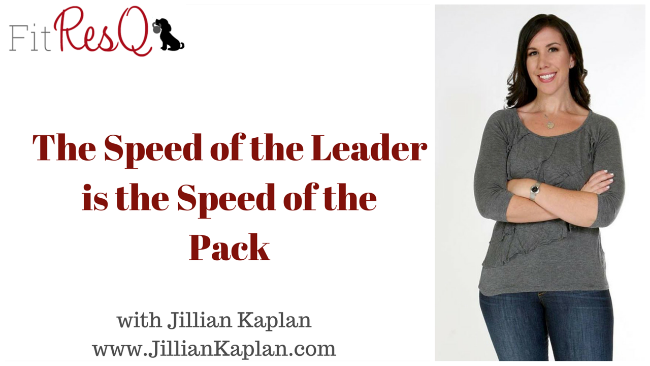 speed of the leader
